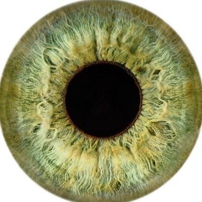Acidentes Oculares Domésticos